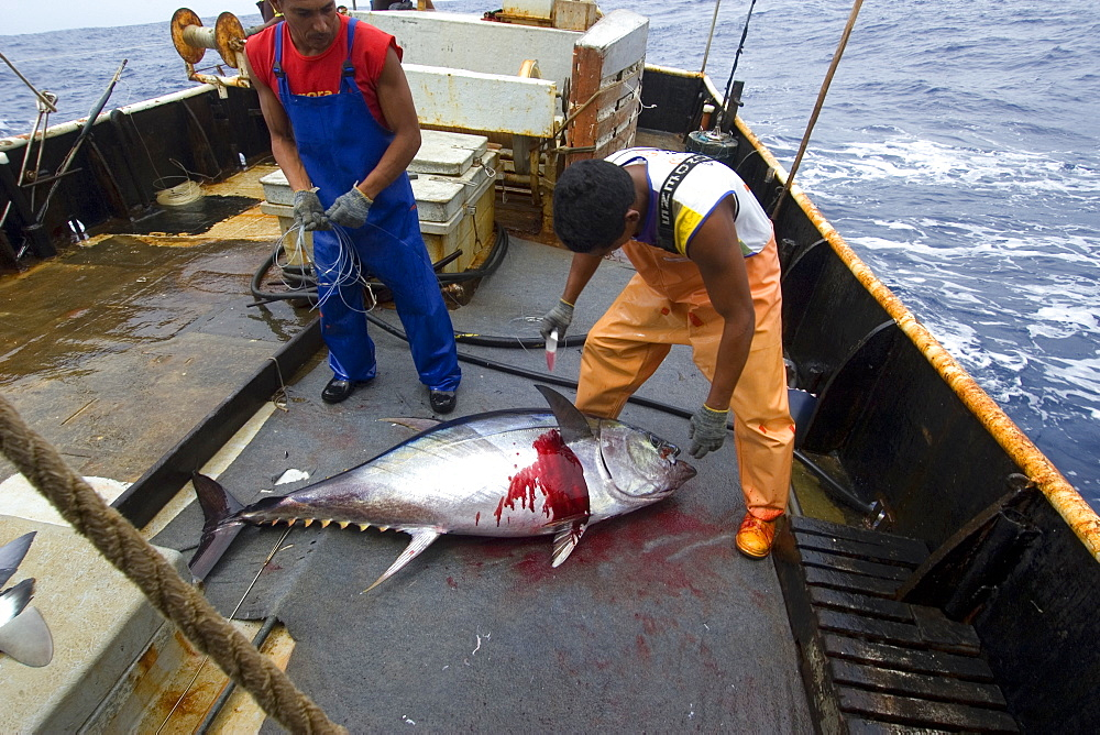 Commercial Fishing Supplies  Commercial Fishing Supplies
