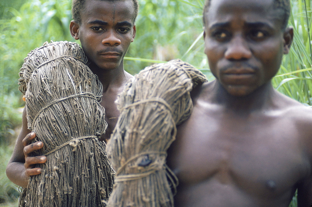 Republic of Congo (formerly Zaire) Ituri Forest. Pygmee men with their hunting nets.