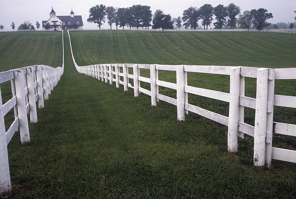 Horse farm near Lexington, Kentucky