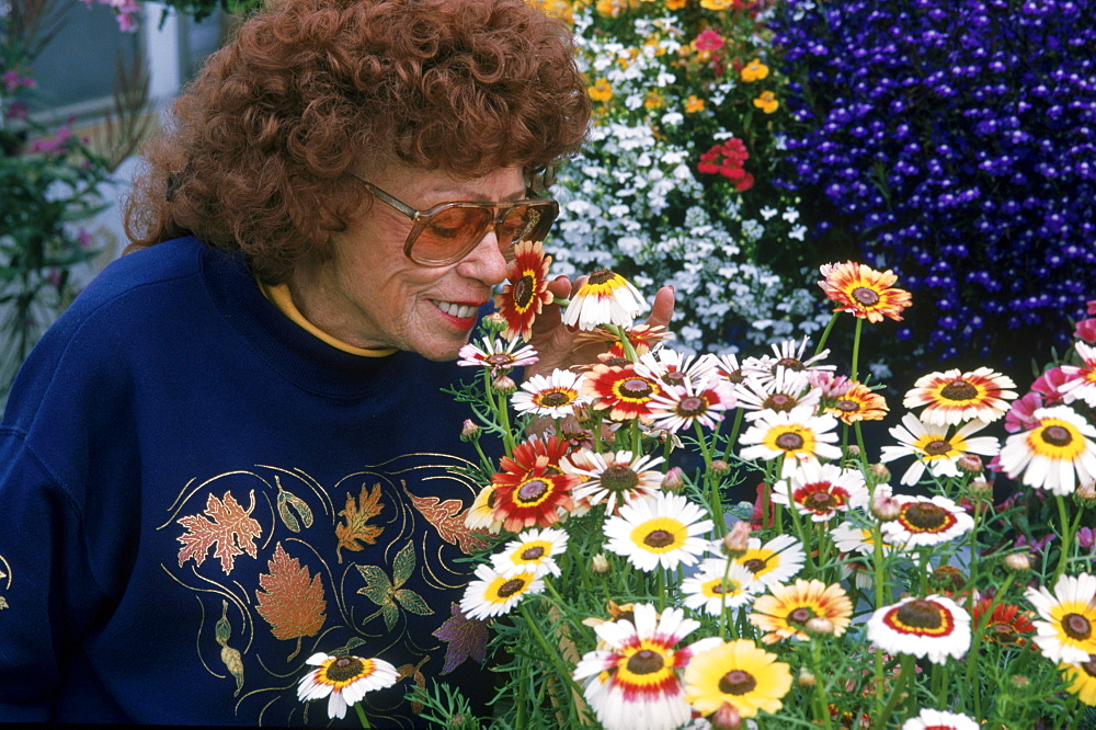 During summer when the eagles are away, Jean Keene enjoys flower gardening at her modest home on the Homer Spit in Alaska.