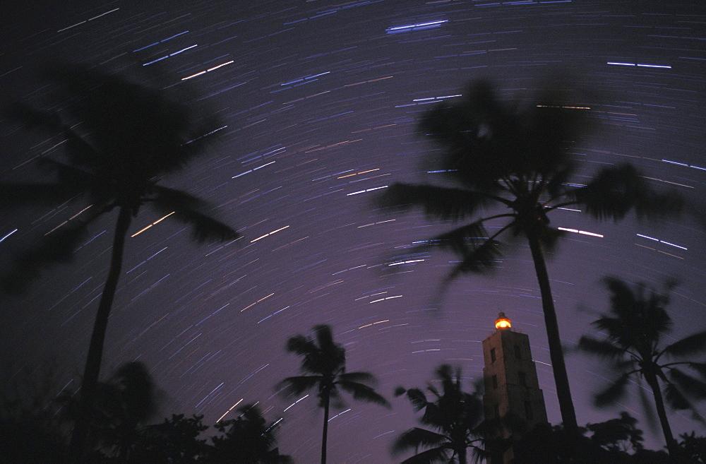 Chumbe Island palm trees on Indian Ocean, Zanzibar, Africa