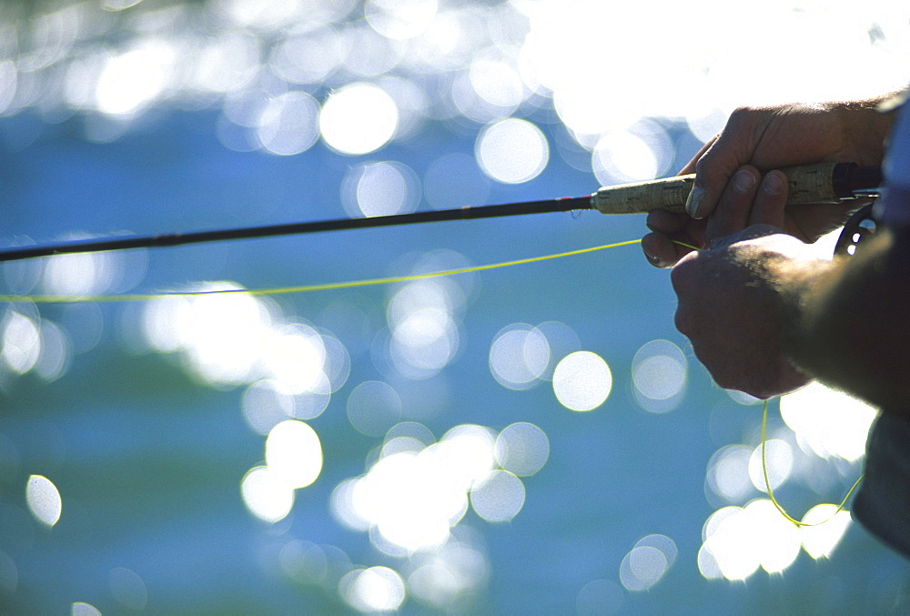 A fly fisherman pulls in line while fishing on the Snake River, Jackson Hole, Wyoming.  Fly fishing uses an artificial fly tied to the end of a fishing line.  Fly fishing requires constant attention to the position and movement of the fly to simulate natural movement.