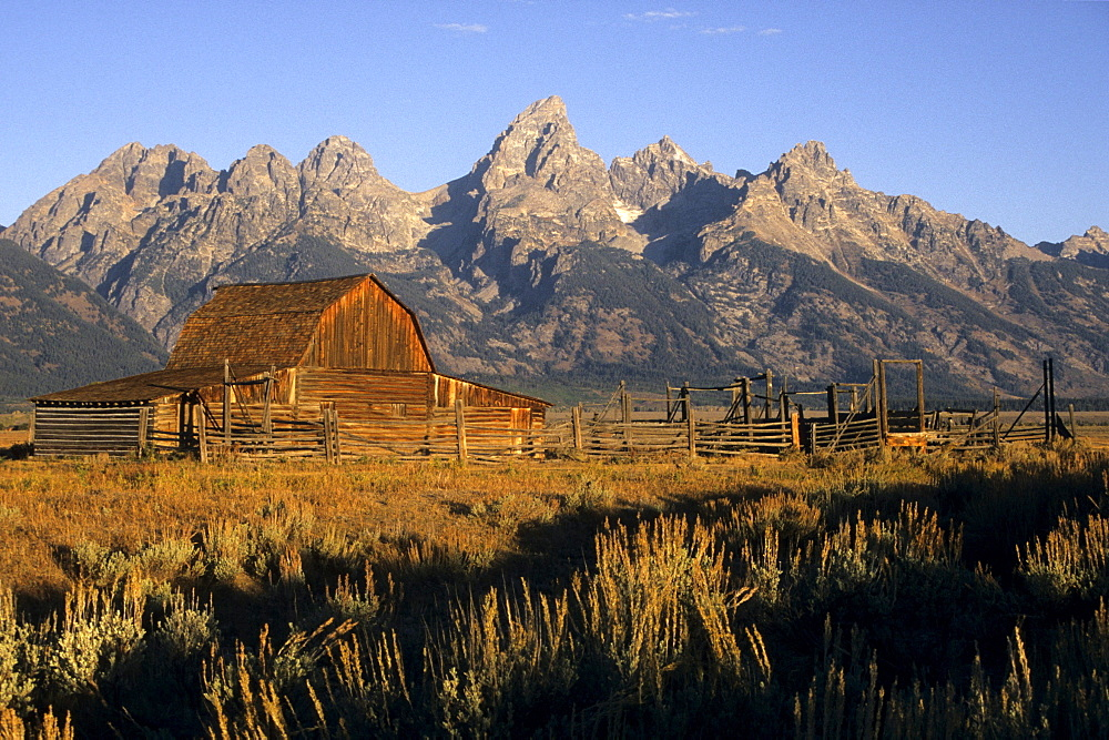 A scenic view of a historic Mormon Row barn at sunrise in Grand Teton National Park, Jackson Hole, Wyoming.