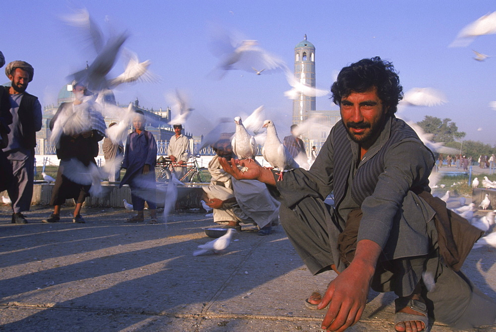 A man feeds white doves at dawn in front of the Blue Mosque, Mazar-i-Sharif, Balkh Province.   Hundreds of doves, who are fed by worshippers and tended by special workers, live around the mosque, and it is thought that the place is so holy that a grey or brown dove will turn white if it lands on the Mosque. The mosque is also known as the Shrine of Hazrat Ali (Hazrat Ali was the son-in-law of the prophet Mohammed), who is believed to be buried here.  The shrine, of particular importance for Afghanistan's Shi'ite Muslims, was first built in the 12th century, destroyed by Genghis Khan, and rebuilt in 1481.  The current mosque, considered by some to be one of the most beautiful in Central Asia, is a modern restoration.