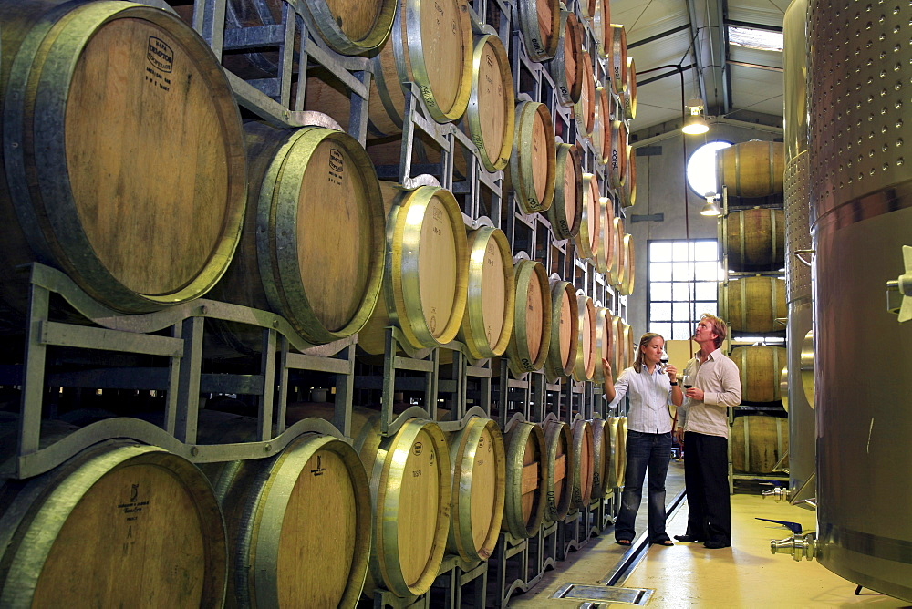 Young couple in their late 20's taste wines in the wine cellar at West Brook Wines in Kumeu, West Auckland, while looking at the stacks of barrels of ageing wines. - 857-34878