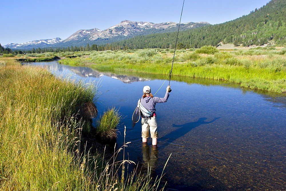 Young woman fly fishing the West Fork of the Carson River in Hope Valley. Lake Tahoe, California.