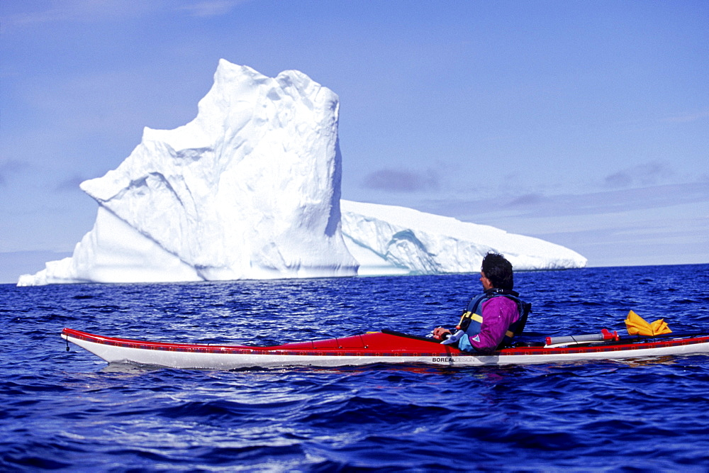 Byron Ricks paddles by a towering iceberg grounded in a cove on Quirpon island.