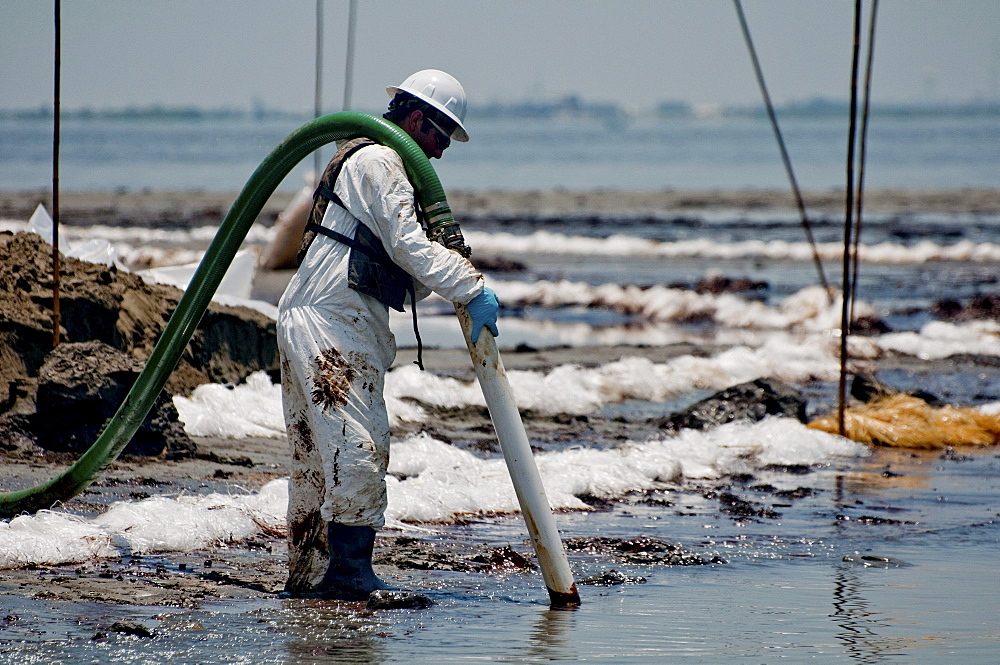 Clean-up crews sucking oil with vacuum tubes and placing absorbent pompom booms. - 857-56572