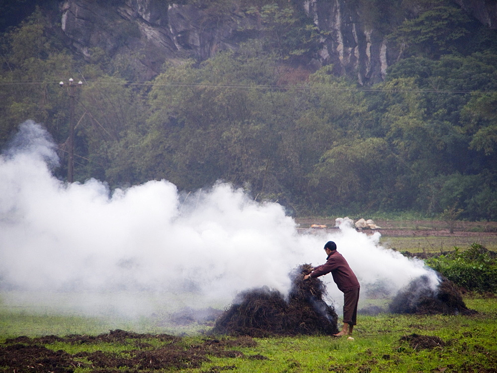 Burning plants on farm in Trang An, Vietnam