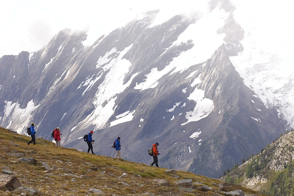 A guided group moves quick over alpine terrain, Canadian Rockies, British Columbia, Canada.