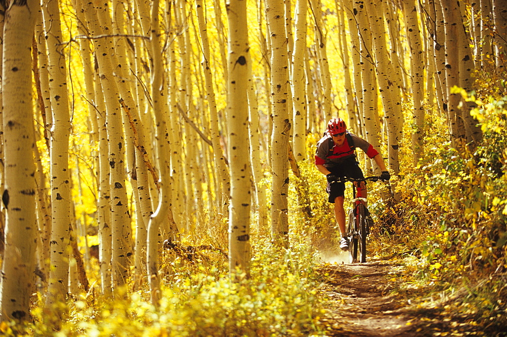 Man fall mountain biking in Park City, Utah. - 857-73145