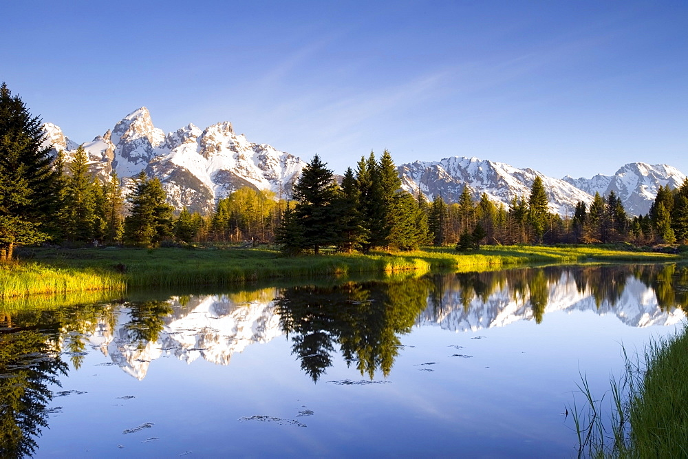 The Tetons reflect in Schwabacher's Landing in Grand Teton National Park, Wyoming.