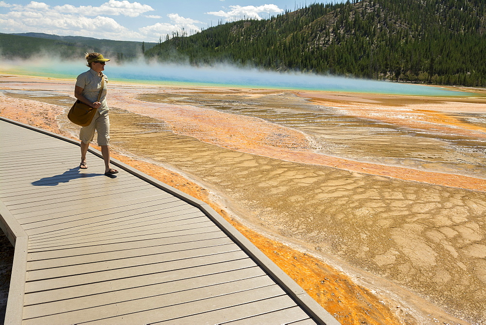 A woman hiking along the boardwalk next to the Grand Prismatic Springs , a thermal hot spring in Yellowstone National Park, Wyoming, Yellowstone, Wyoming, usa