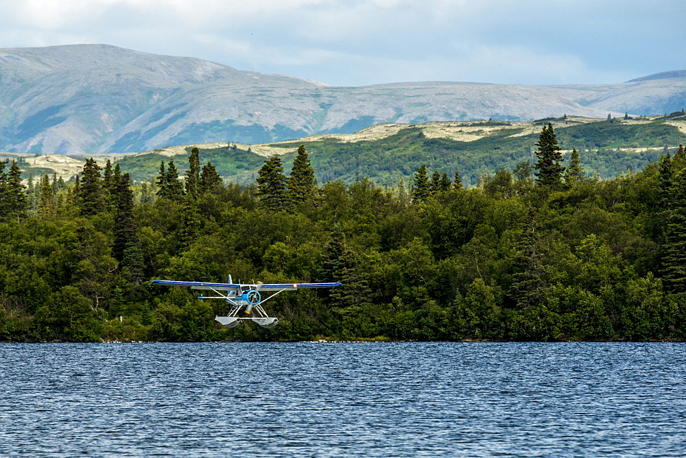 Float plane just about to touch down while landing in Illiamna Alaska.