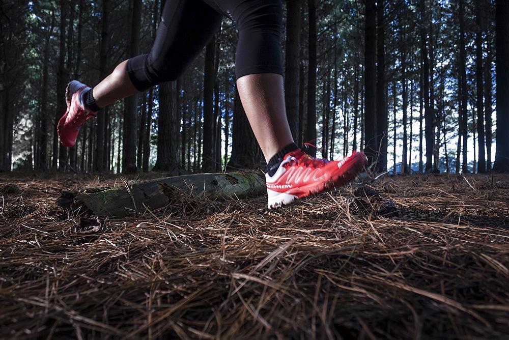 Female athlete running on a trail through a pine plantation in North West Tasmania.