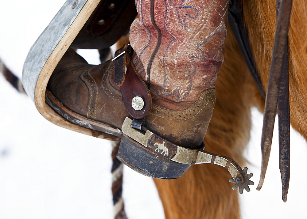 Close up shot of boot and spur of a girl riding a horse.