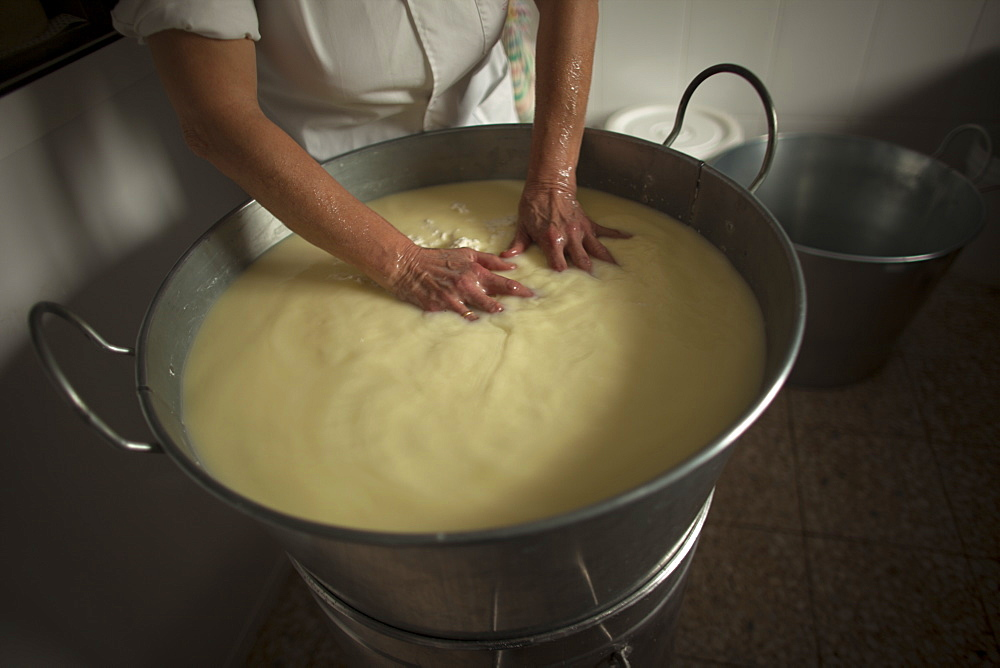 A woman works making Pecorino cheese in Quesos Oliva artisanal cheese making workshop in Villaluenga del Rosario, Sierra de Grazalema Natural Park, Cadiz province, Andalusia, Spain