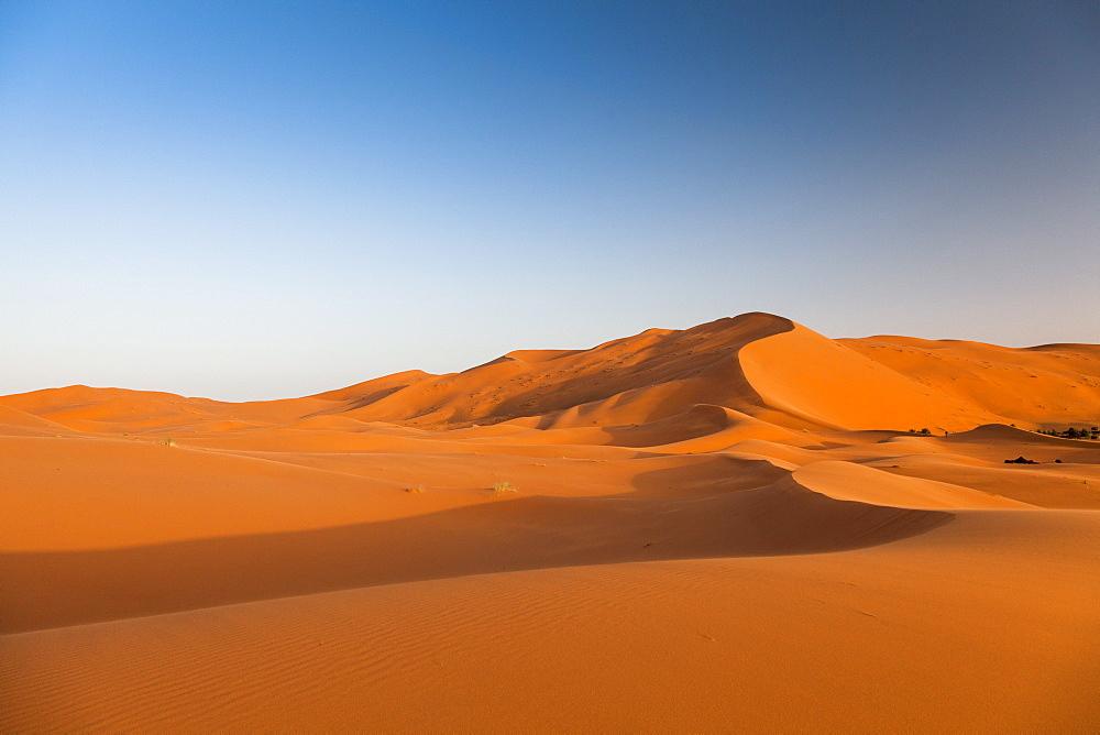 Sunrise on the red sand dunes in the Sahara desert at Erg Chebbi, Merzouga. Morocco