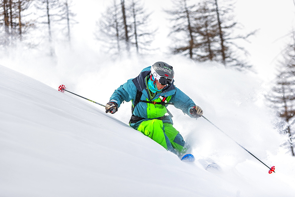 a man turns with his skis in a beautiful powder wood in the west italian alps