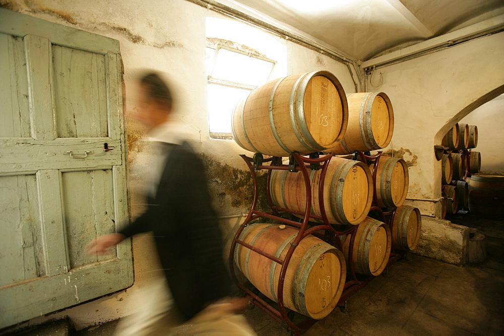 Petrolo barrel cellar