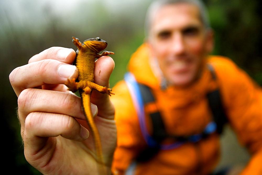 Man holding a salamander after trail running.