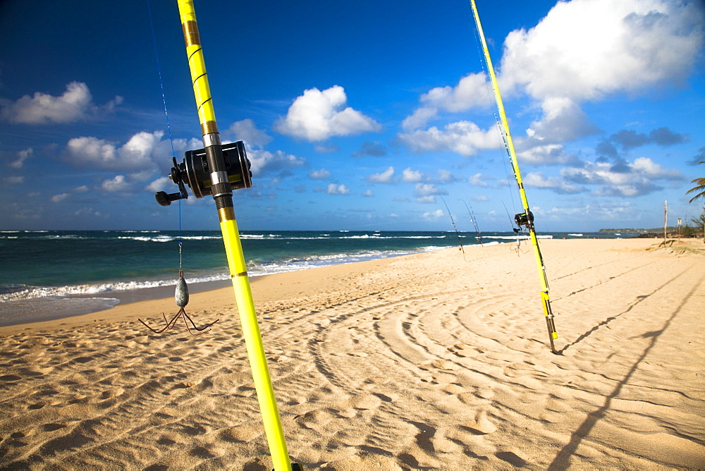 A row of fishing rods on the beach,
