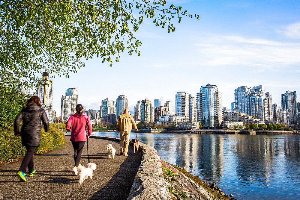 People walking dogs on a waterside trail with Vancouver skyline in the distance.