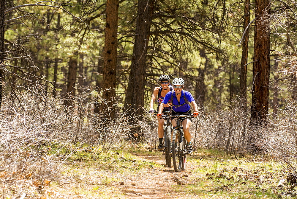 Two women mountain biking on the Boggy Draw Trail near Dolores, Colorado.