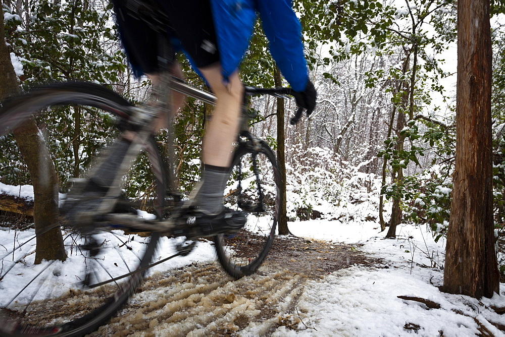 A cyclocross rider biking after a recent snow storm at Lake Fairfax in Reston Virginia, Reston, Virginia, United States of America