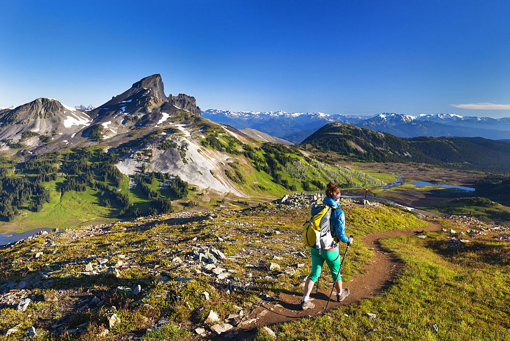 A young woman backpacking on the Panorama Ridge Trail with Black Tusk Mountain in the background in Garibaldi Provincial Park, British Columbia, Canada.