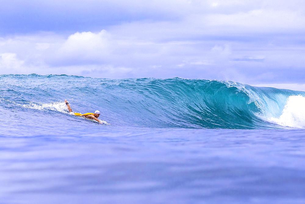 Surfer on a wave.