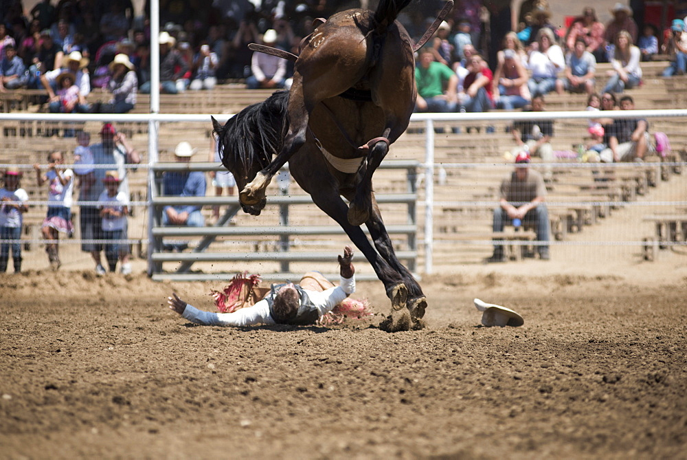 A cowboy hits the ground after being bucked from his horse at the Woodlake Lions Rodeo rodeo in Woodlake, Calif., on May 10, 2015.
