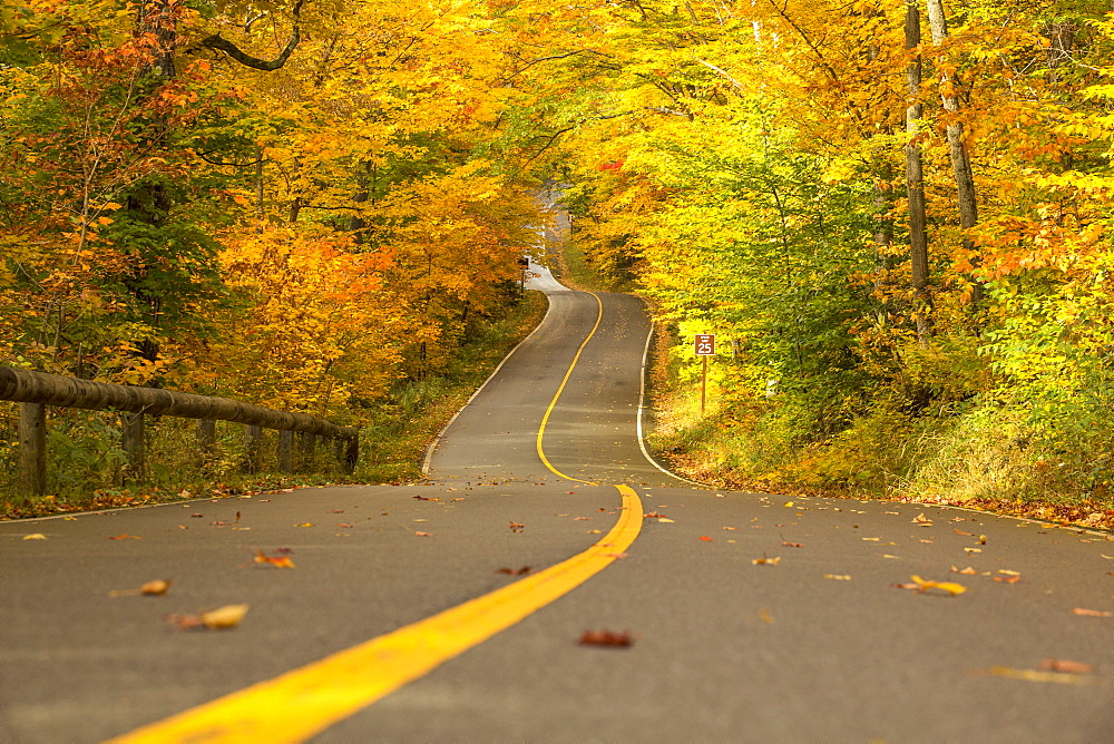 Mother nature displays its colors over the quintessential New England road up to Mount Greylock.