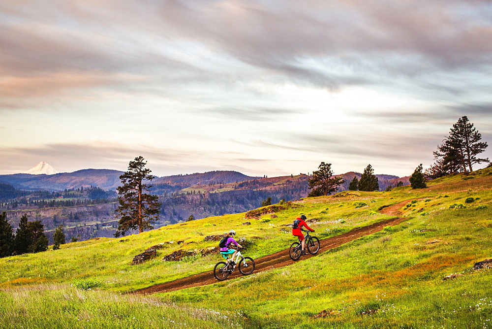Two young women ride mountain bikes up a single-track trail through an open meadow under early morning sky.