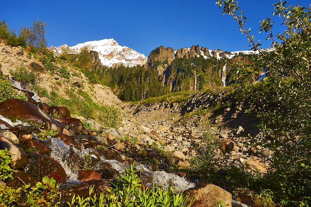 A View Of Mount Hood From The Timberline Trail
