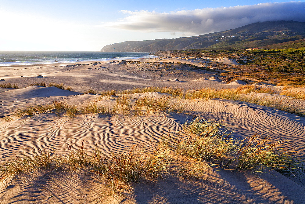 View Of Sand Dune At Praia Do Guincho In Cascais, Portugal - 857-93228