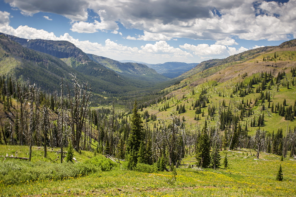 The Continental Divide In Backcountry Montana