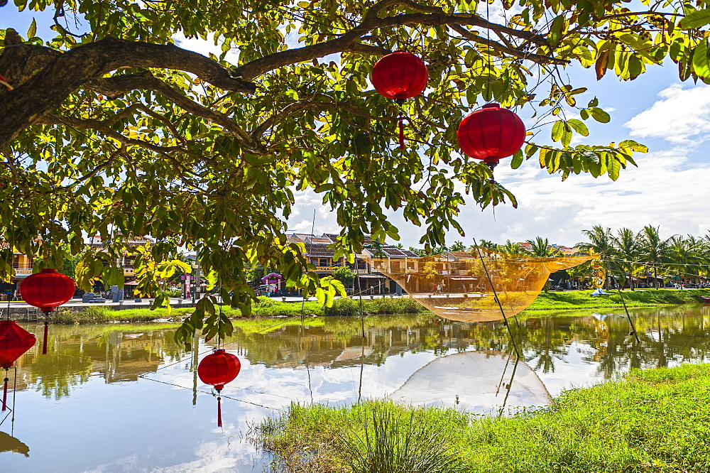 Red Lanterns Hanging In A Tree In Hoi An
