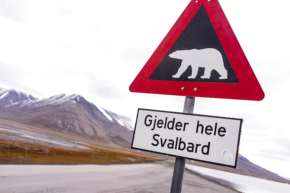 Signpost Warning Drivers To Beware Of Polar Bears Crossing The Road
