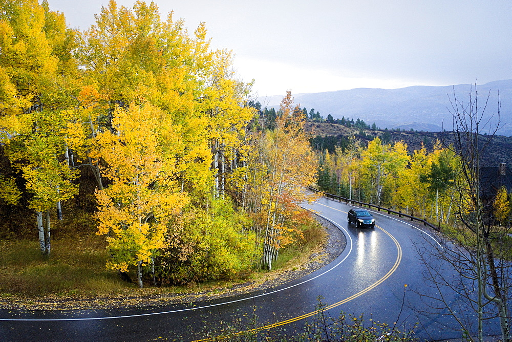 Car Driving On Curvy Mountain Road In The Rain Following Aspen Trees