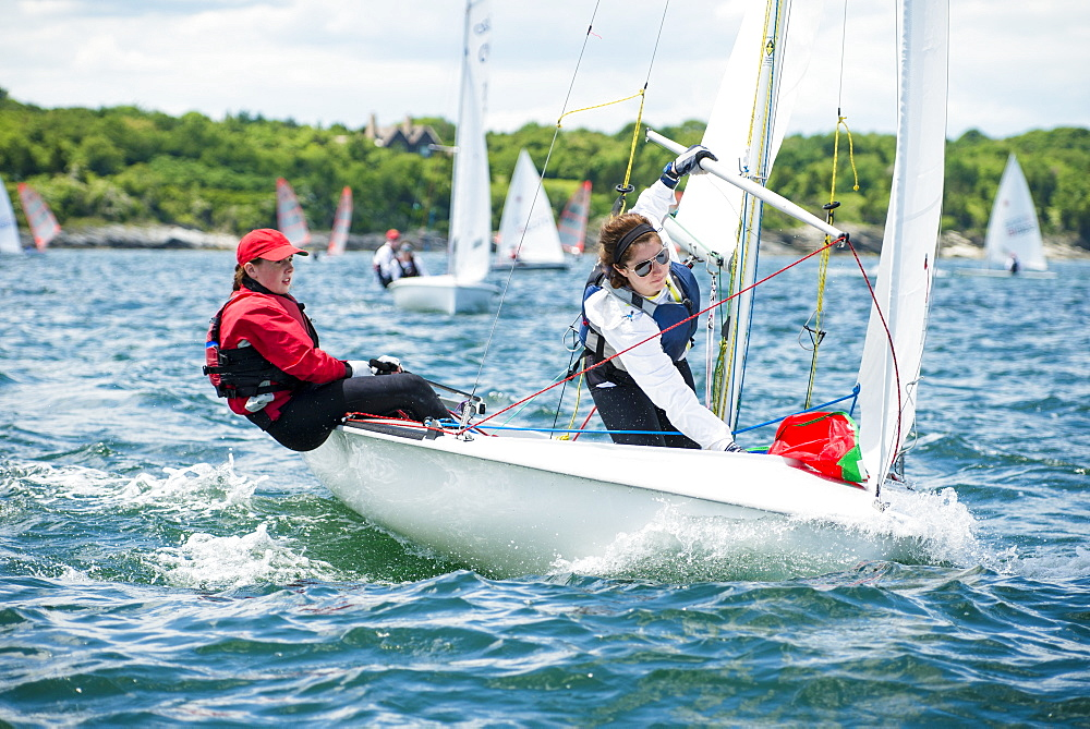 Junior Sailors Competing As Part Of A Regatta On Narragansett Bay