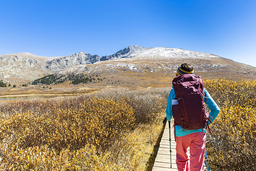 Female Hiker Walking On Boardwalk Beneath Mount Bierstadt In Colorado