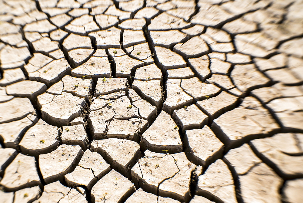 Detail of Cracked soil in dry lake bed