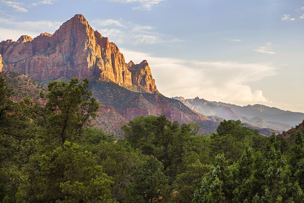 Cliffs Of Zion Canyon National Park At Sunset