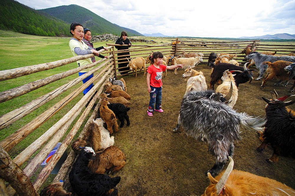 June 13, 2011 / Mongolia / Young mongol and there goals.