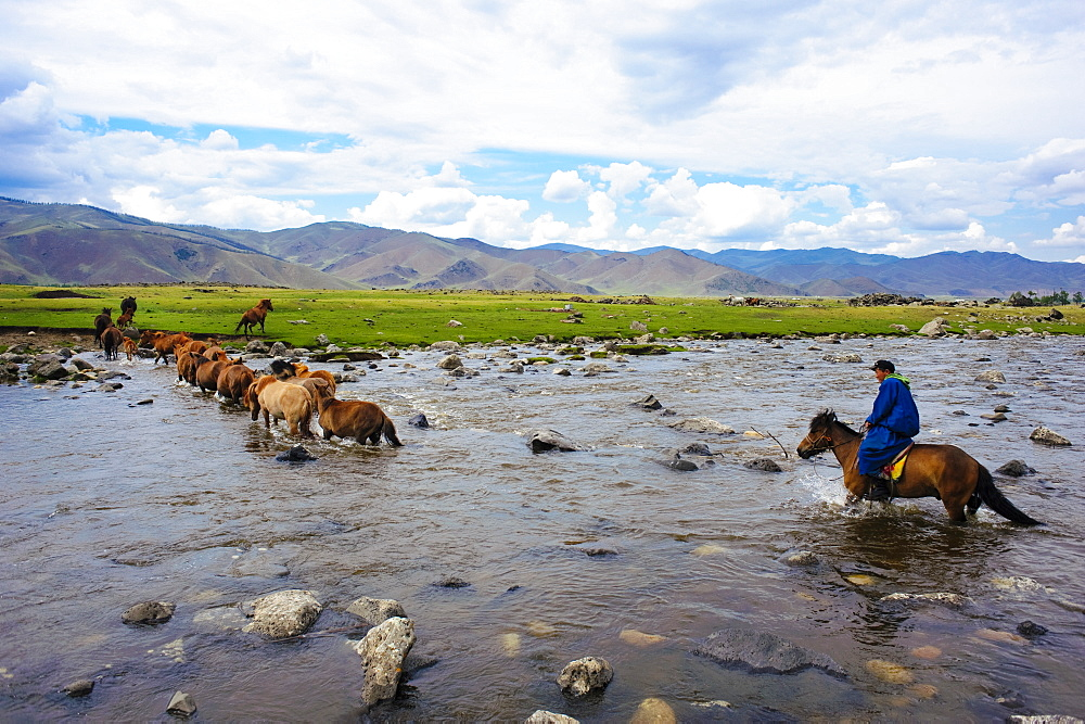 June 13, 2011 / Mongolia / Young mongol farmer cross the river for bringing his horses to home.