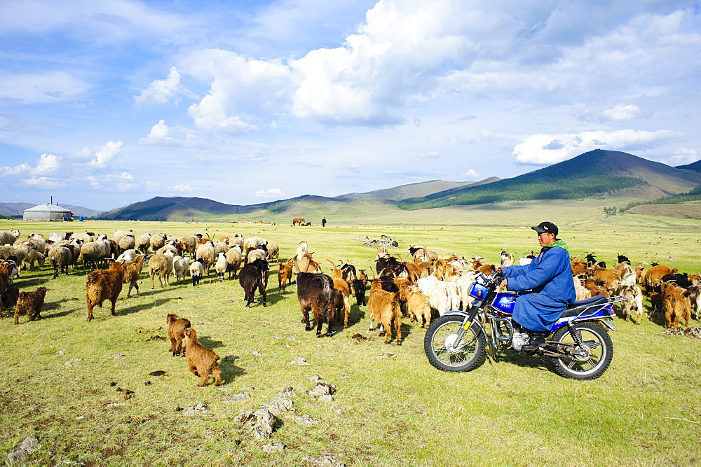 June 13, 2011 / Mongolia / Young mongol farmer, brings his goal to the field with his moto