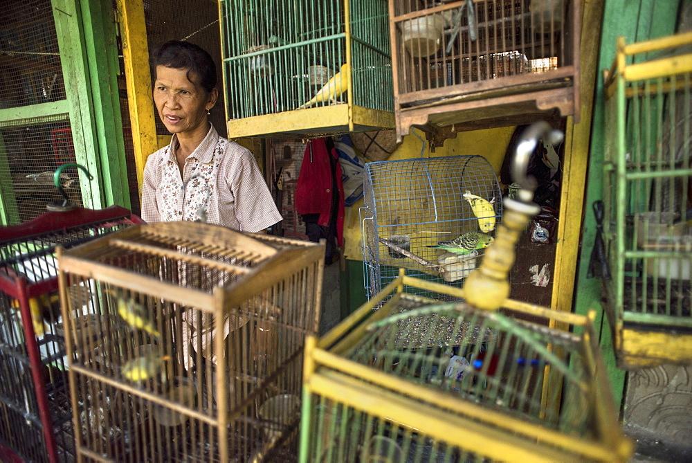 A Caged Bird Vendor At The Pasar Ngasem Bird Market Of Yogyakarta, Java, Indonesia