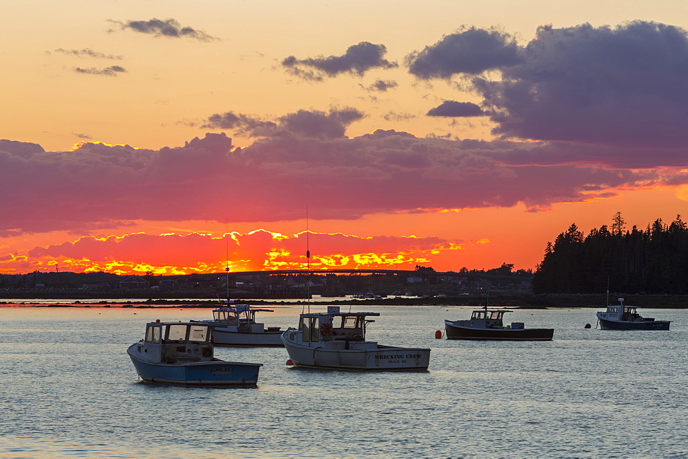 Lobster Boats In The Harbor At Sunset, Beals, Maine