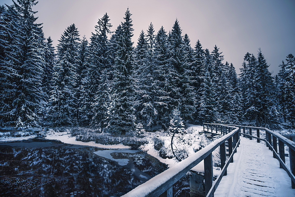 A snow covered bridge leads across the Fichtelsee lake into a spruce forest in the Fichtelgebirge mountain range in Bavaria, Germany.